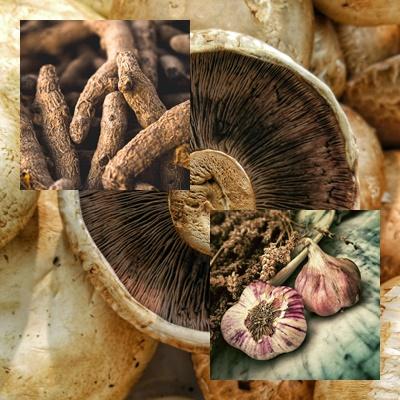 champignon ail et curcuma